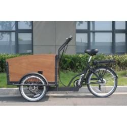 Triciclo Eléctrico de carga...